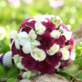 hoa cuoi mau tim