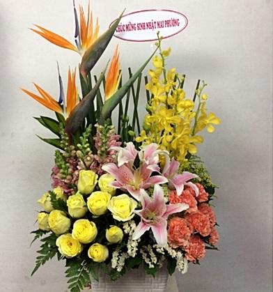 gio hoa ly