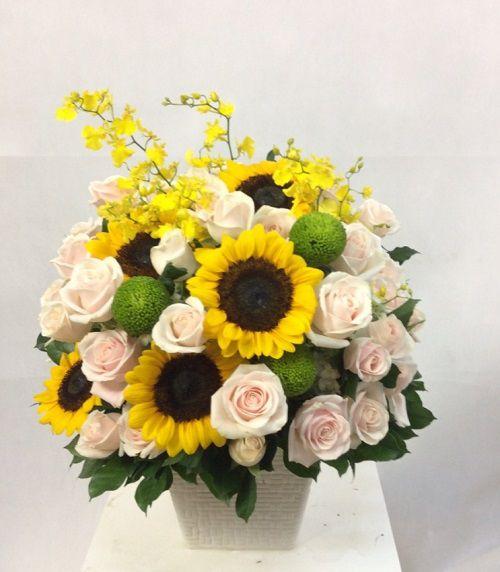 gio hoa